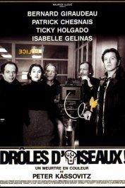 background picture for movie Droles d'oiseaux