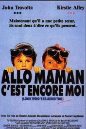background picture for movie Allo maman c'est encore moi