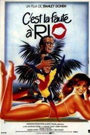 background picture for movie C'est la faute à Rio