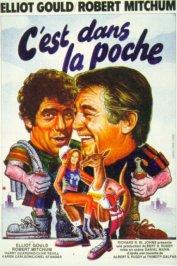 background picture for movie C'est dans la poche