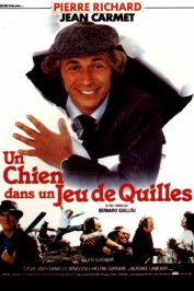 background picture for movie Un chien dans un jeu de quilles