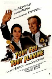 background picture for movie Tout feu tout flamme
