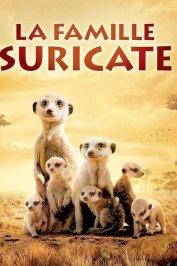 background picture for movie La famille Suricate