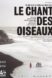 background picture for movie Le Chant des oiseaux