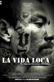 background picture for movie La Vida Loca