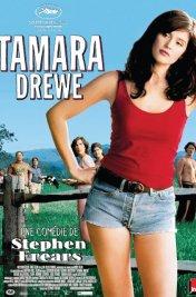 Affiche du film : Tamara Drewe