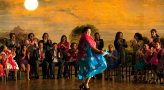 Affiche du film : Flamenco Flamenco
