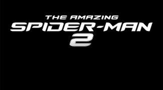 Affiche du film : The Amazing Spider-Man : le destin d'un héros