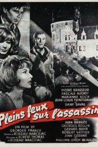 Affiche du film : Pleins feux sur l'assassin