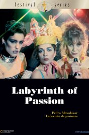 background picture for movie Labyrinthe des passions