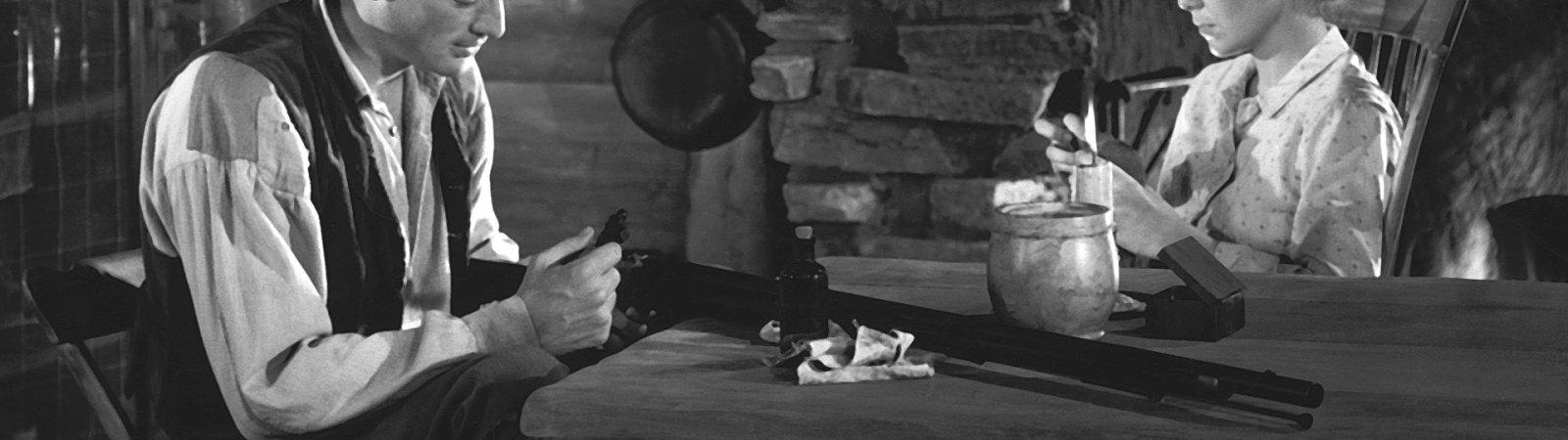 Photo du film : Jody et le faon
