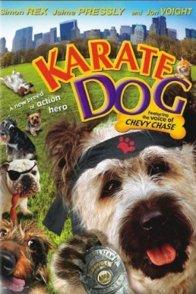 Affiche du film : Karate dog
