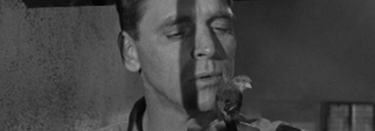 Photo du film : Le prisonnier d'alcatraz