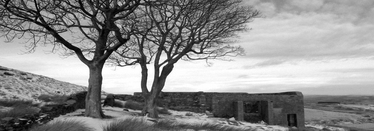 Photo du film : Les hauts de Hurlevent