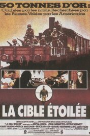 background picture for movie La cible etoilee