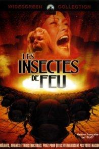 Affiche du film : Les insectes de feu