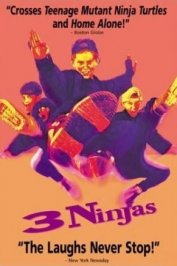 background picture for movie Ninja kids