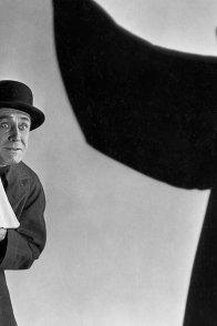 Affiche du film : The bat whispers