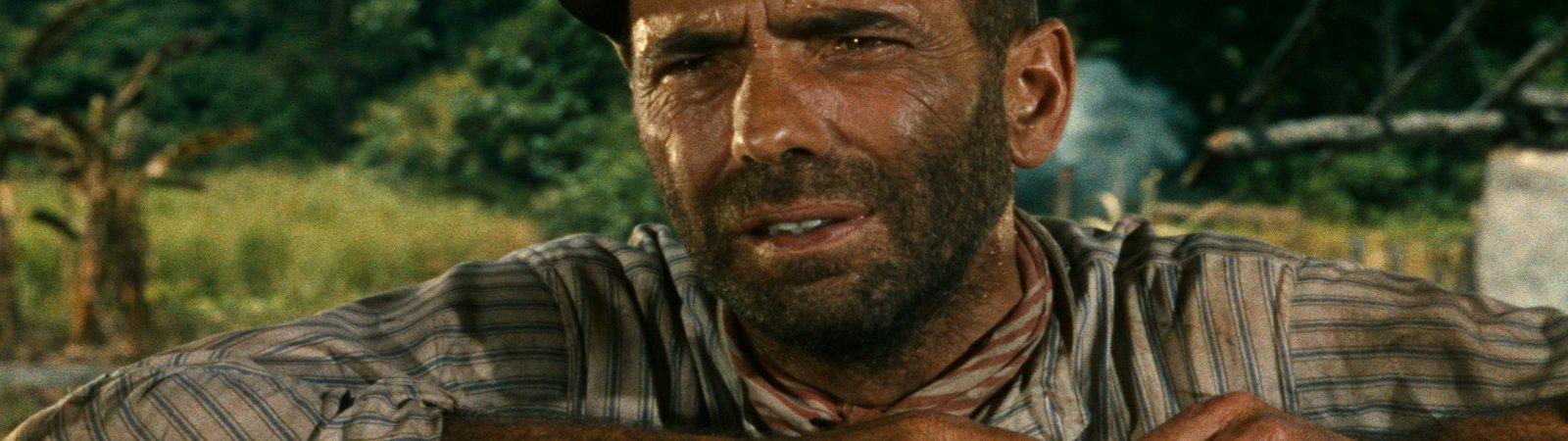 Photo dernier film Humphrey Bogart