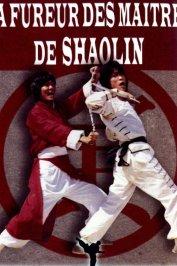background picture for movie La fureur des maitres de shaolin