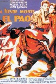 Affiche du film : La fievre monte a el pao