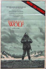 background picture for movie Un homme parmi les loups