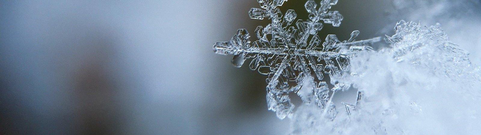 10 films qui donnent froid